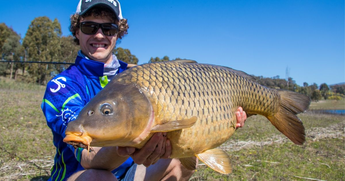 Targeting Carp in Nagambie