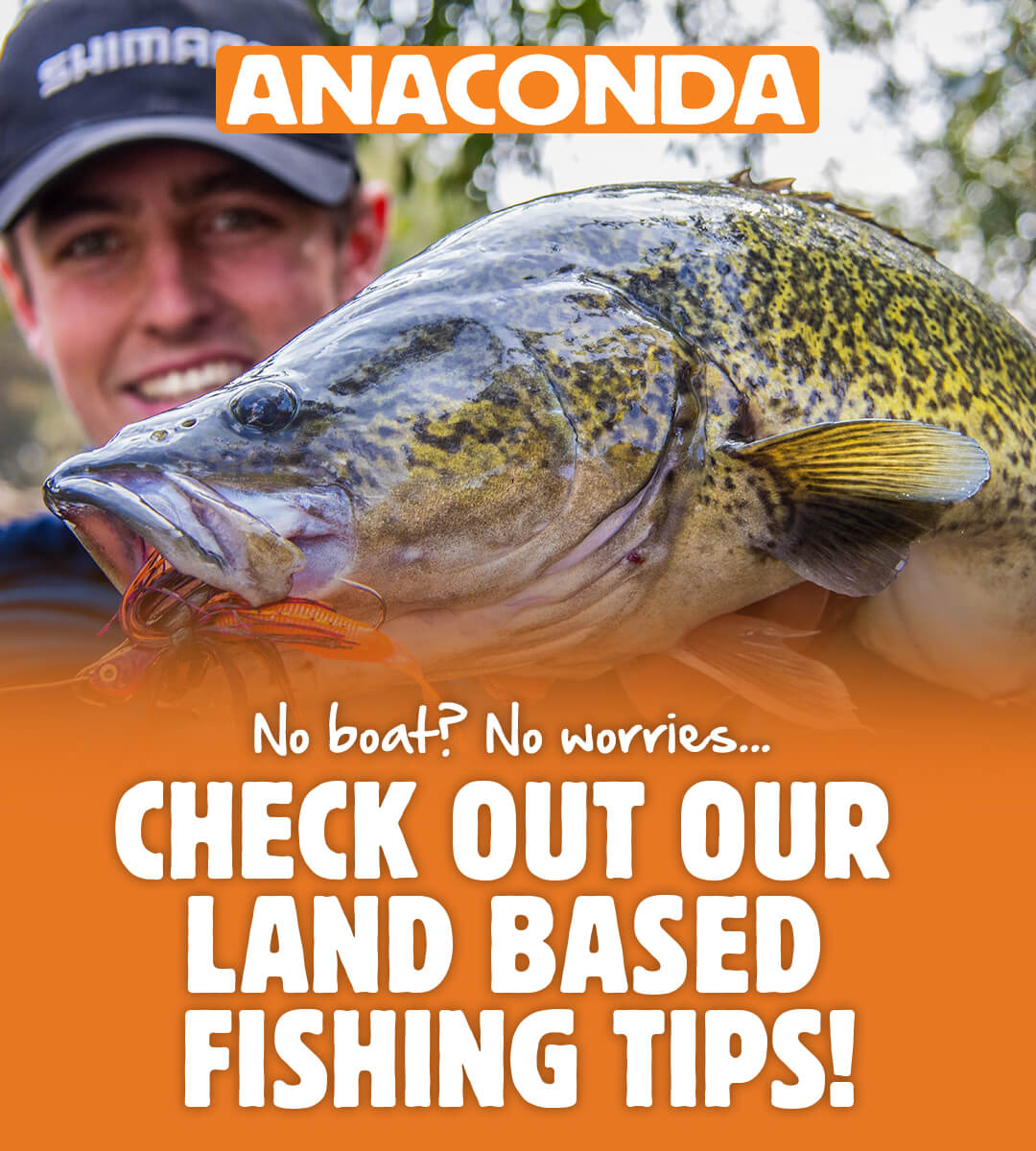 Land-Based Fishing Tips Brought to you by Anaconda